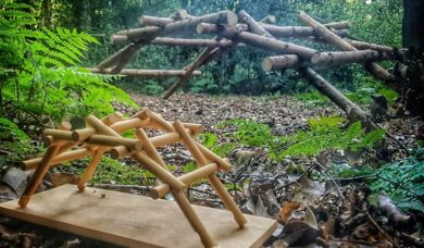 wooden construction project in forest